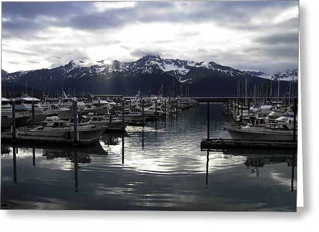 Water Vessels Greeting Cards - Seward Harbor Greeting Card by Phyllis Taylor