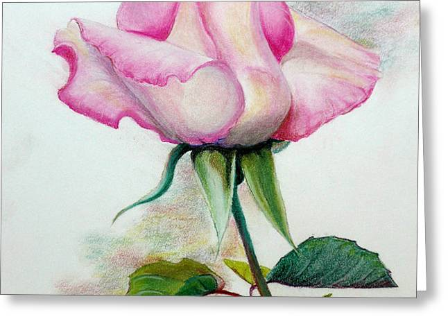 SO PINK Greeting Card by KARIN KELSHALL- BEST