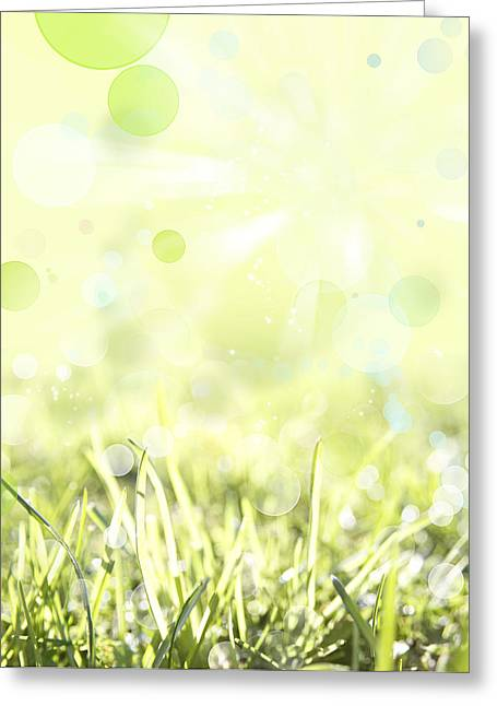 Flora Greeting Cards - Spring background Greeting Card by Les Cunliffe