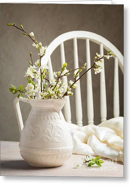 Interior Still Life Photographs Greeting Cards - Spring Blossom Greeting Card by Amanda And Christopher Elwell