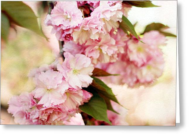 Cherry Blossom Tree Greeting Cards - Spring Cherry   Greeting Card by Jessica Jenney