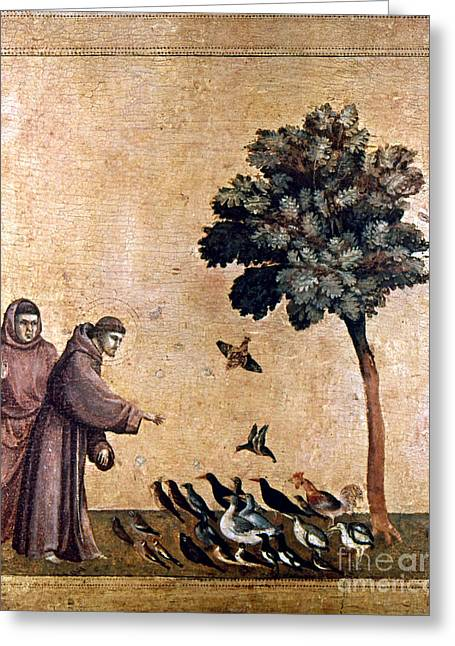 Feed Paintings Greeting Cards - St. Francis Of Assisi Greeting Card by Granger