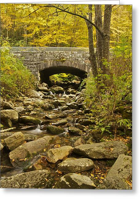 Stone Bridge 6063 Greeting Card by Michael Peychich