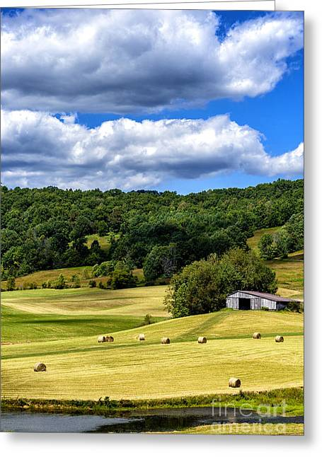 Hay Bales Greeting Cards - Summer Morning Hay Field Greeting Card by Thomas R Fletcher