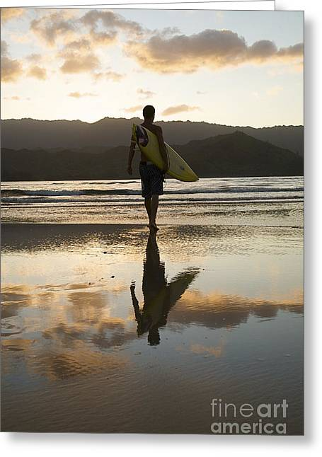 Sunbathing Greeting Cards - Sunset Surfer Greeting Card by Kicka Witte - Printscapes