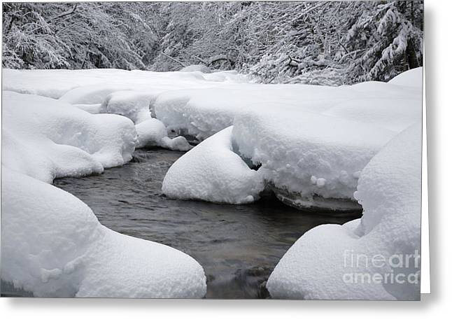 Swift River - White Mountains New Hampshire Usa Greeting Card by Erin Paul Donovan