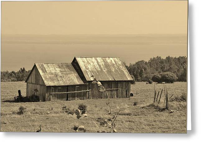 Old Barns Pyrography Greeting Cards - The Old Barn 2 Greeting Card by Claude Prud