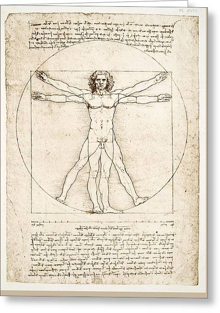 Vitruvian Man Greeting Cards - The Proportions of the human figure Greeting Card by Leonardo Da Vinci