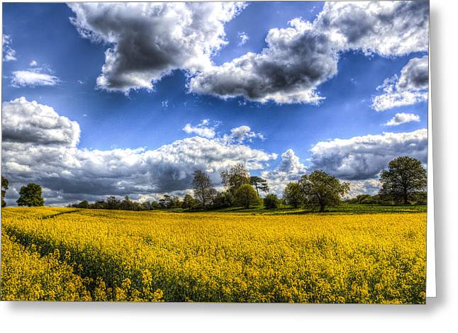 Farmers Field Greeting Cards - The Summer Farm Greeting Card by David Pyatt