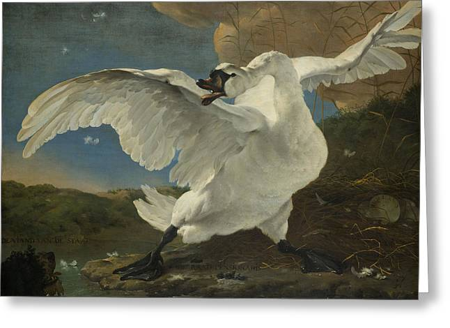 The Threatened Swan Greeting Card by Jan Asselijn