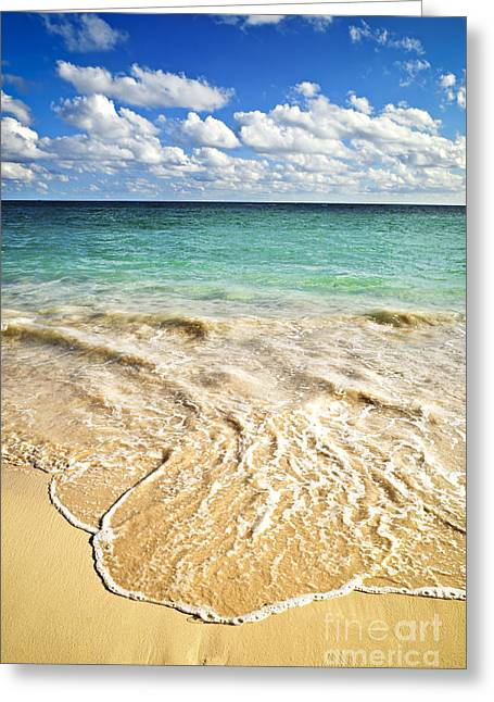 Ocean Shore Greeting Cards - Tropical beach  Greeting Card by Elena Elisseeva
