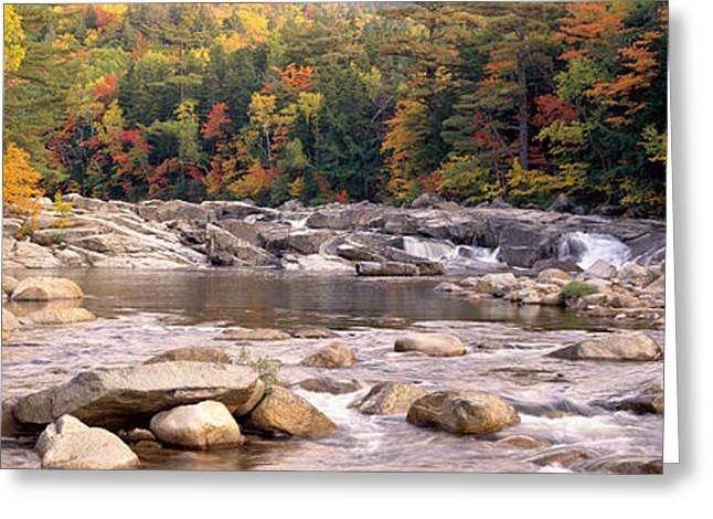 Foliage In White Mountains Greeting Cards - Usa, New Hampshire, White Mountains Greeting Card by Panoramic Images