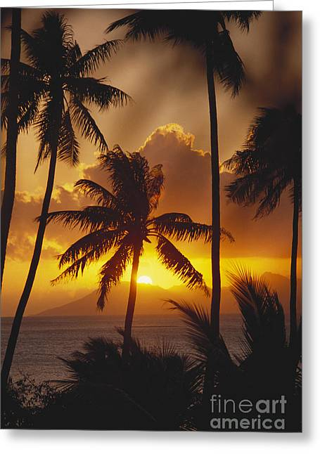 View Of Tahiti Greeting Card by Joe Carini - Printscapes
