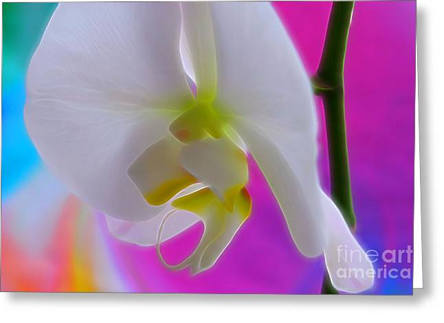 Vivid Joy Greeting Card by Krissy Katsimbras