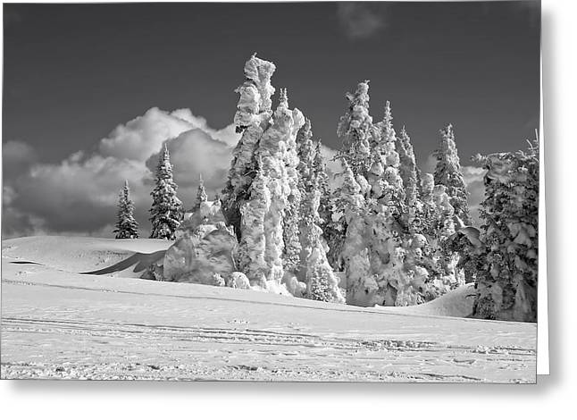 Snow-covered Landscape Greeting Cards - Winter Ski Slope Greeting Card by Nc Contracting