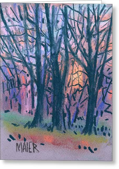 Winter Pastels Greeting Cards - Winter Sunset Greeting Card by Donald Maier