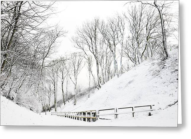 Winter Time Greeting Cards - Winter Greeting Card by Svetlana Sewell
