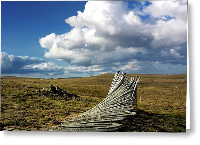 Wooden Fence Greeting Cards - Wooden posts Greeting Card by Bernard Jaubert