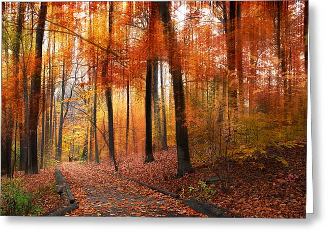 Walkway Digital Greeting Cards - Woodland Passage Greeting Card by Jessica Jenney
