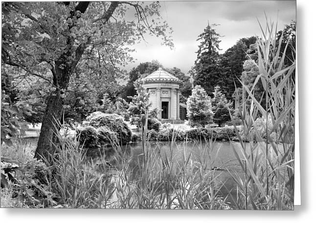 Infrared Greeting Cards - Woodlawn  Greeting Card by Jessica Jenney