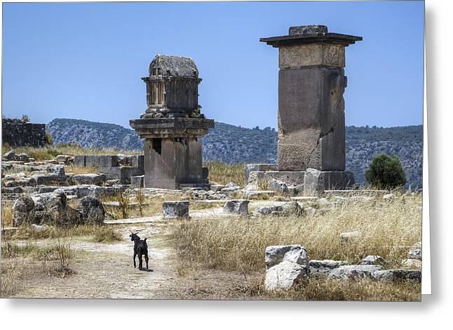 Greeting Cards - Xanthos - Turkey Greeting Card by Joana Kruse