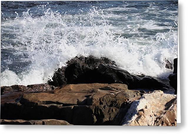Atlantic Beaches Pyrography Greeting Cards - 2010 NH Seacoast 6 Greeting Card by Robert Morin