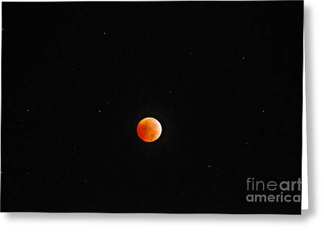 2010 Winter Solstice Lunar Eclipse Greeting Card by David Lee Thompson