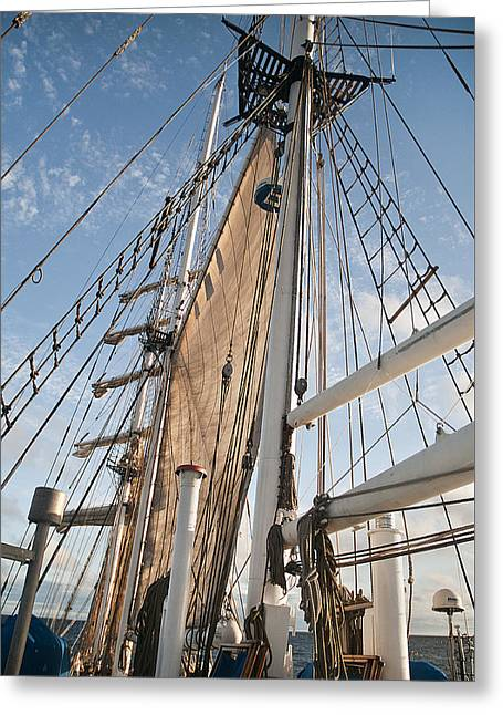 Boat Cruise Greeting Cards - Rigging Greeting Card by MAK Imaging