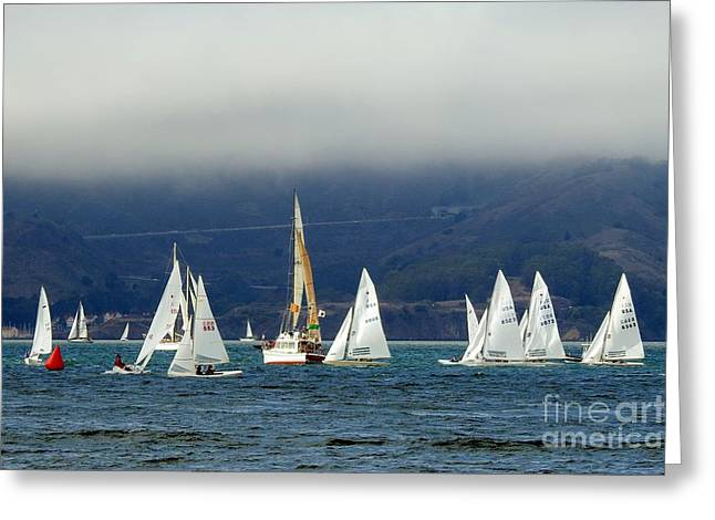 Best Sailing Photos Greeting Cards - 2015 Calvin Paige Regatta Greeting Card by Scott Cameron