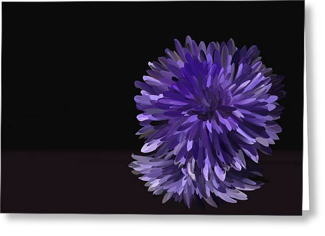 Aster Drawings Greeting Cards - 205 Aster Greeting Card by Carrie Anthony