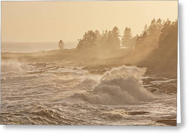 Maine Shore Greeting Cards - Large Waves Near Pemaquid Point On The Coast Of Maine Greeting Card by Keith Webber Jr