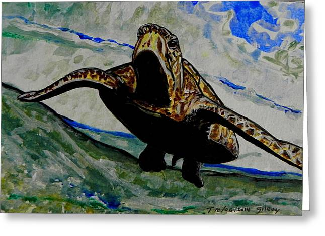 Beach Photographs Mixed Media Greeting Cards - Sea Turtle Greeting Card by W Gilroy