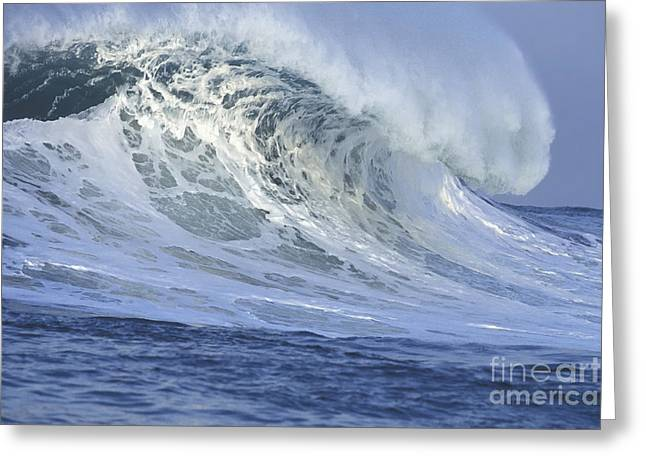 Waving Greeting Cards - 25 Feet on a Beautiful Morning Greeting Card by Stan and Anne Foster