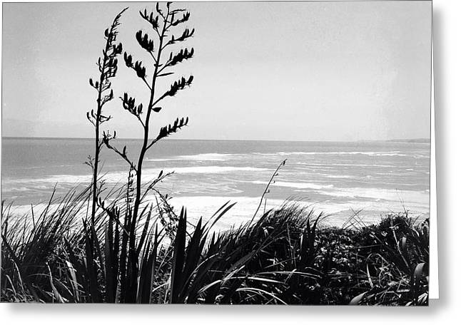 Ocean Landscape Greeting Cards - Beach Greeting Card by Les Cunliffe