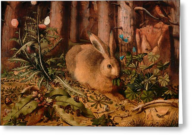 Hare Greeting Cards - A Hare In The Forest Greeting Card by Hans Hoffmann