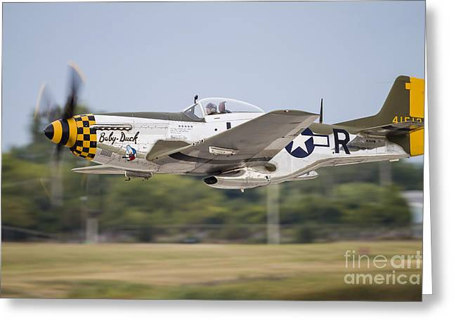 Heritage Foundation Greeting Cards - A P-51 Mustang Takes Off From Waukegan Greeting Card by Rob Edgcumbe