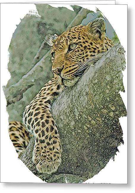 African Leopard Greeting Card by Larry Linton