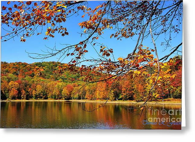 Allegheny Greeting Cards - Autumn Serenity Greeting Card by Thomas R Fletcher