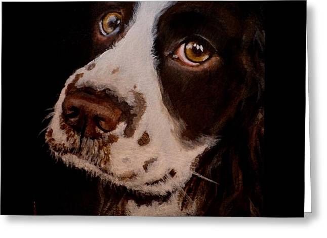Spaniel Greeting Cards - Bailey Greeting Card by Carol Russell