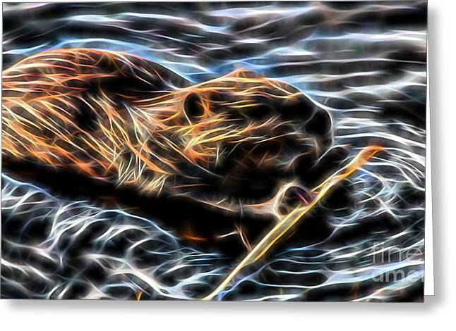 Beaver Greeting Cards - Beaver Collection Greeting Card by Marvin Blaine