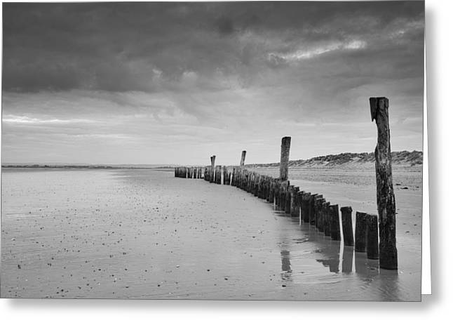 Wood Post Greeting Cards - Black and white wooden posts on beach with stormy sky Greeting Card by Matthew Gibson