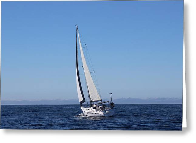 Sailboat Ocean Greeting Cards - Bobby McGee, Oct., 2014 Greeting Card by Larry  Daeumler