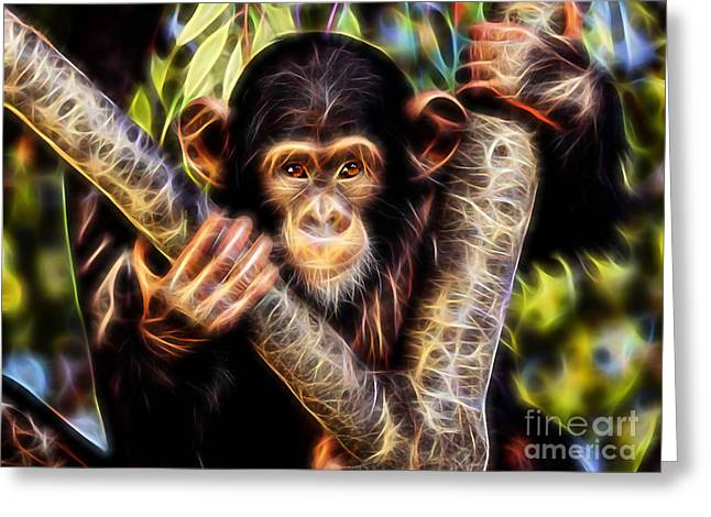 Monkey Greeting Cards - Chimpanzee Collection Greeting Card by Marvin Blaine