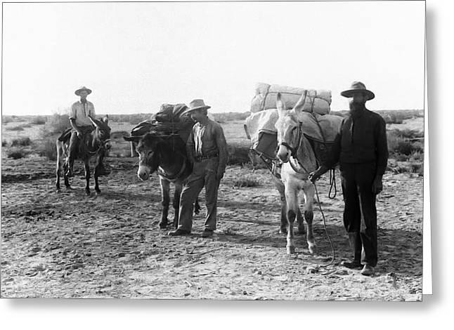 Prospector Greeting Cards - 3 DESERT PROSPECTORS c. 1900 Greeting Card by Daniel Hagerman