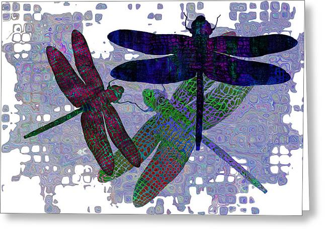Larva Greeting Cards - 3 Dragonfly Greeting Card by Jack Zulli