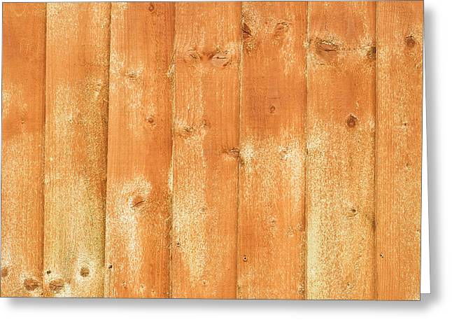 Shed Photographs Greeting Cards - Fence panels Greeting Card by Tom Gowanlock