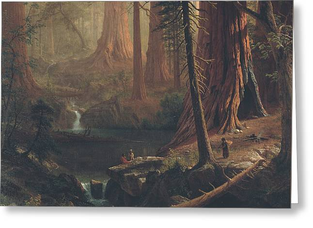 Landscape Painter Greeting Cards - Giant Redwood Trees of California Greeting Card by Albert Bierstadt