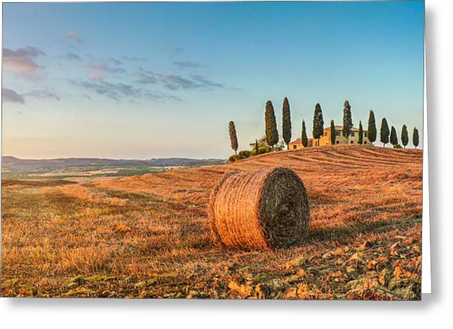 Tuscan Sunset Greeting Cards - Golden Tuscany Greeting Card by JR Photography
