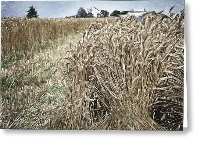 Harvest Time Greeting Card by F Leblanc