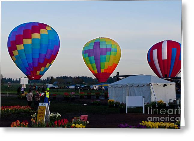 Red Greeting Cards - Hot Air Balloons Greeting Card by Mandy Judson